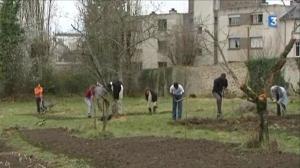 Un jardin en pleine ville. Reconquérir des friches urbaines en assurant le lien social, c'est la motivation des adhérents de l'assocation Jardinons Ensemble à Limoges. © France 3 Limousin